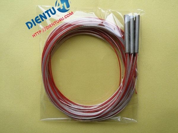 Đầu dò nhiệt RTD PT100 3 dây