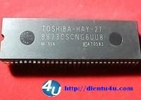 8873CSCNG6UU8 TOSHIBA-HAY-27